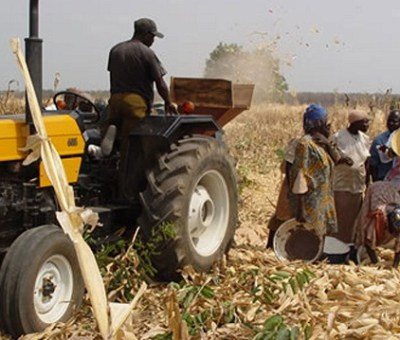 Buhari Says More Investment In Agricultural Sector Needed