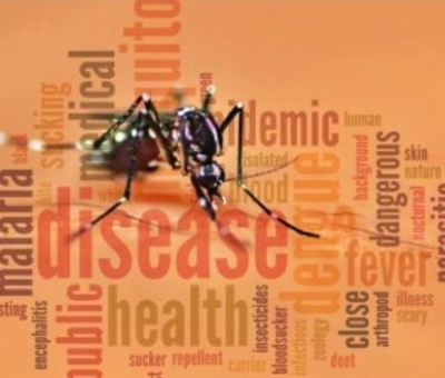 China Free Of Malaria After 70-Year Battle