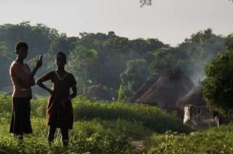 India Grants Nigeria $100 million Loan
