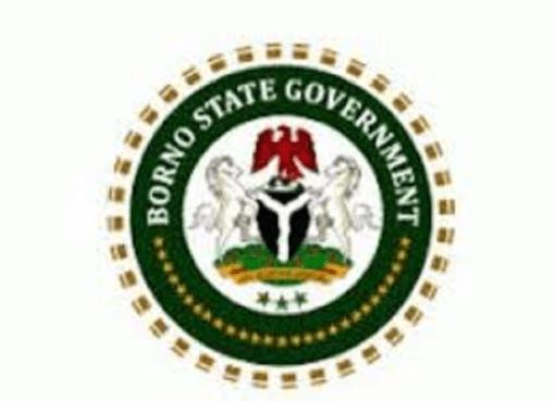 Borno Healthcare sector