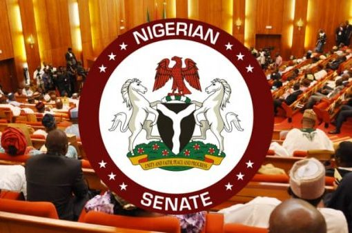 """""""We Are Not Creating 20 new States"""" - Senate"""
