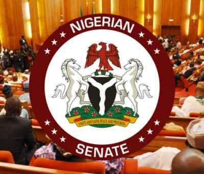 Senate Rejects Petroleum Resources Ministry's ₦98.4m Expenditure On Flyers