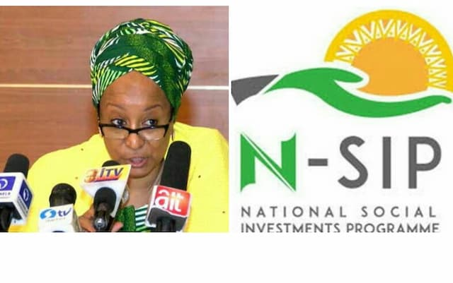 NSIP/NPower: FG Engages Independent Monitors In Lagos