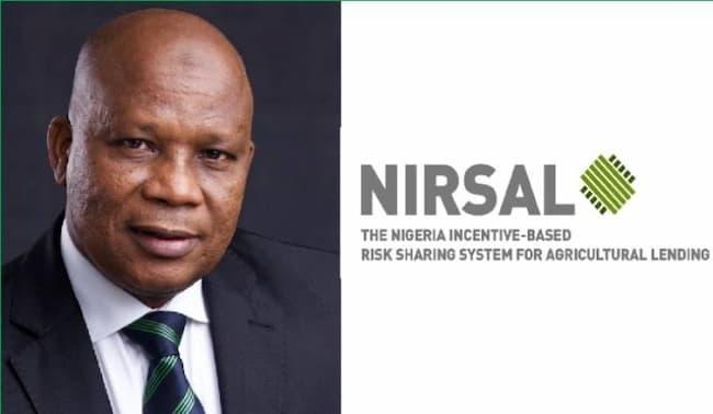 NIRSAL Boss, Aliyu Abdulhameed, Ranks Among Top Global CEOs