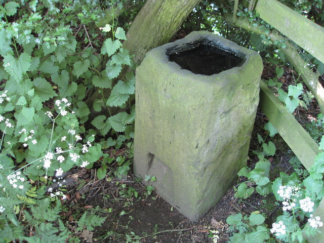 The_Vinegar_Stone_-_geograph.org.uk_-_1318227