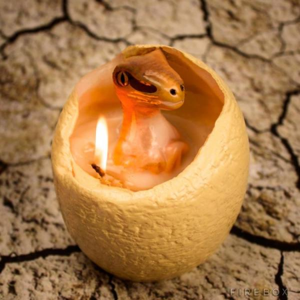 hatching-dinosaur-egg-candle-6986