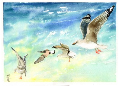 Gaivotas-no-Mar-Watercolour-27x37cm