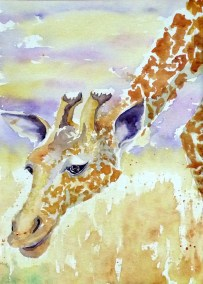Giraffe-Head-Watercolour-39x28cm