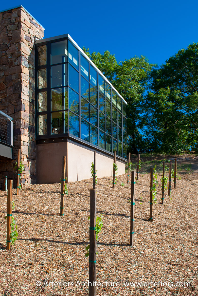 Modern Sonoma California Glass House on Vineyard-4
