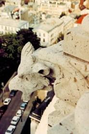 Sacre Coeur Roof-10