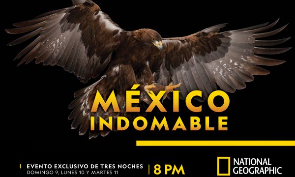 mexico_indomable_horizontal_4_ok