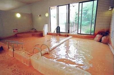 和歌山温泉ランキング⑩関西最強!?花山温泉 薬師の湯