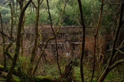 京都の心霊スポット⑦ロシア病院(旧海軍第三火薬廠跡)