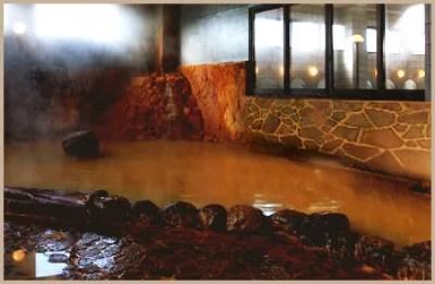 大阪府スーパー銭湯ランキング⑦褐色のお湯が効く!松原天然温泉You・ゆ~