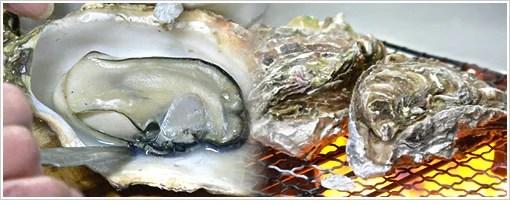 松島牡蠣料理ランキング⑤和食のお店で牡蠣づくし!かきと海鮮料理 旬海