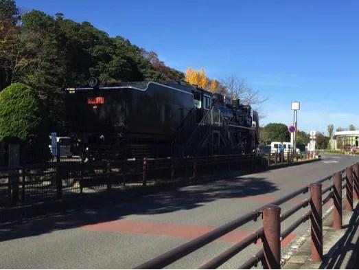 水戸観光スポットランキング②湖が広々と!千波公園