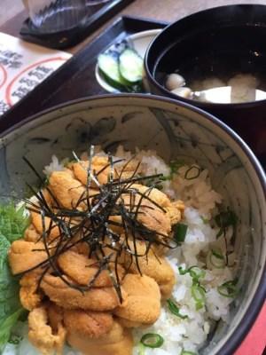 仙台海鮮丼ランキング⑩うにを山ほど!片倉うに屋