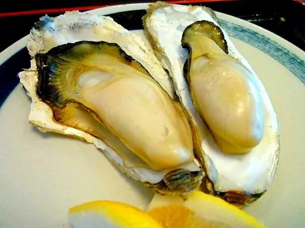 塩釜牡蠣料理ランキング①これぞ港の風景!塩竈かき小屋本店