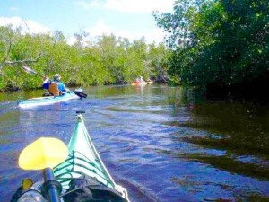 What to do in Orlando Kayak tours