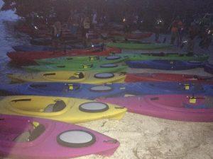 florida bioluminescence kayaking
