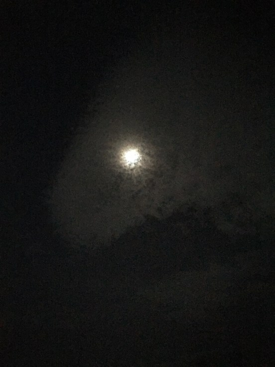 looks almost like snow in front of the moon