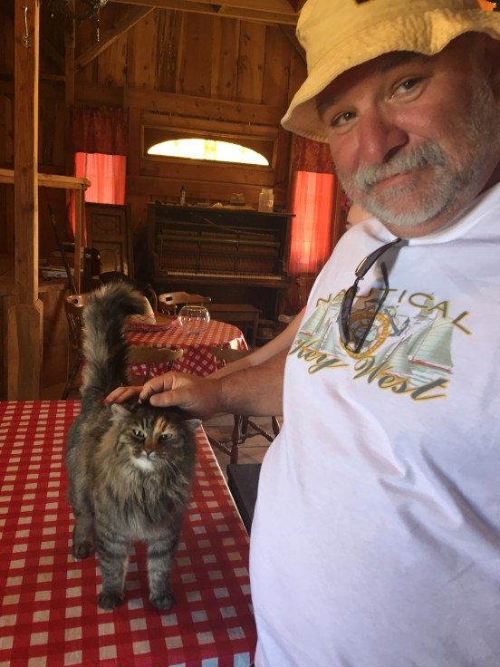 Bill petting one of the 6 cats that live on the property