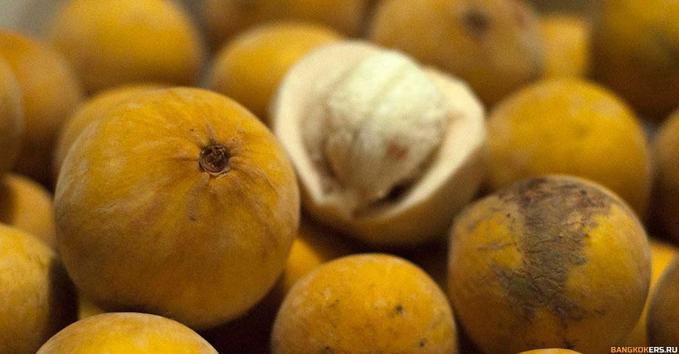 Сантол – это плодовое вечнозеленое дерево родом из Юго-Восточной Азии