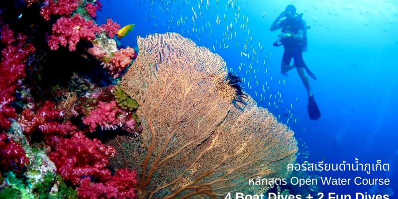 【泰國國旅】活動票券:Koh Raya Phuket 普吉皇帝島潛水課程體驗