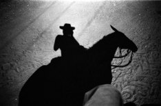 _91-Brasilien-BKL-Pferd-Schatten