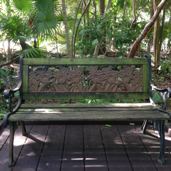 Orchid Bench