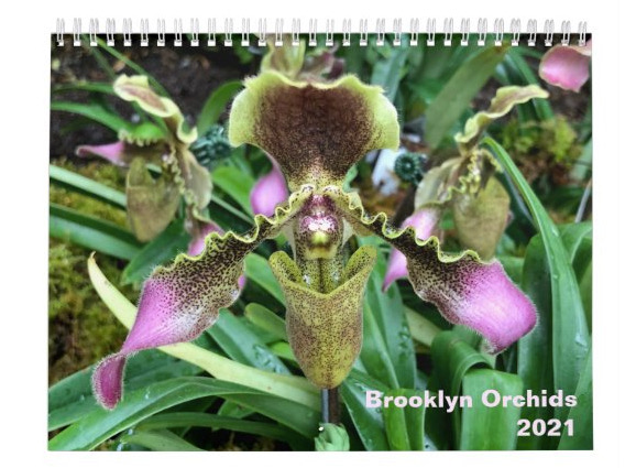 2021 Brooklyn Orchids Calendar