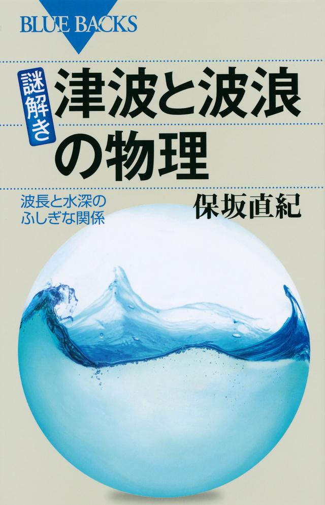 Image result for 津波と波浪の物理