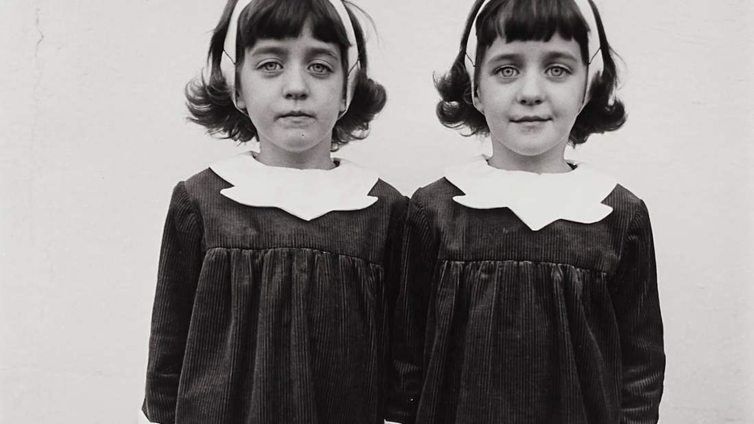 Identical Twins, by Diane Arbus (1967)
