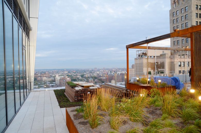 Skyview, from the roofdeck of 300 Ashland Place