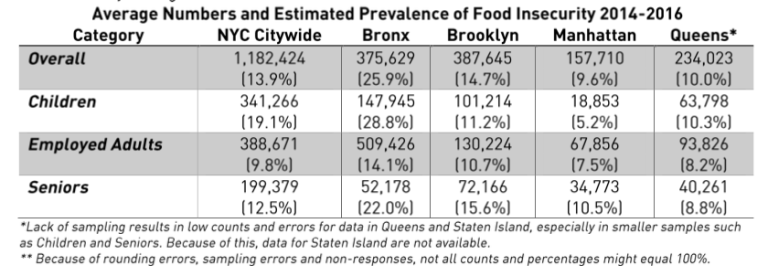 food insecurity, BK Reader, Hunger Free America, food insecurity Brooklyn, SNAP, Supplemental Nutrition Assistance Program