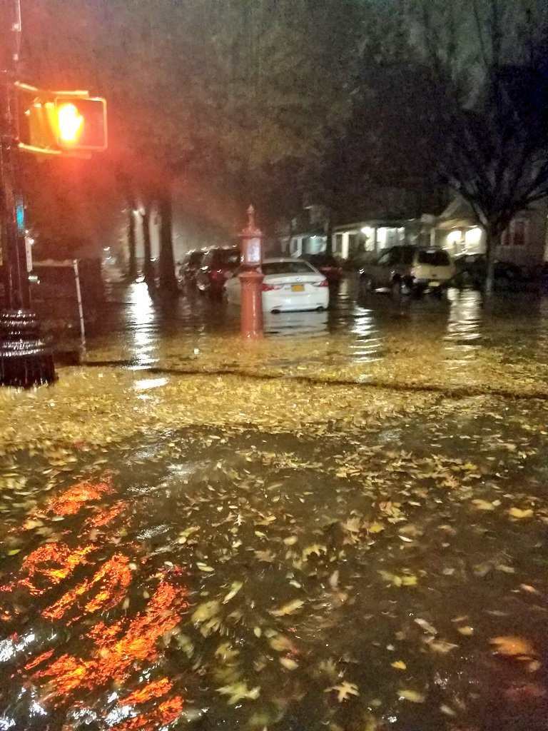 Flatbush is among the city's 20 most flood-prone neighborhoods, according to a new analysis by real estate platform Localize.city.