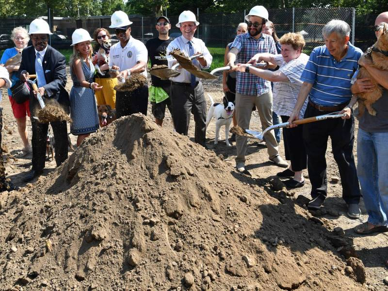 Brooklyn doggies will get a 7,000-square-feet play space for safe, unleashed fun