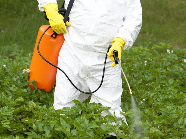 Bed-Stuy Faces 'Environmental Racism' In Pesticide Use: Report