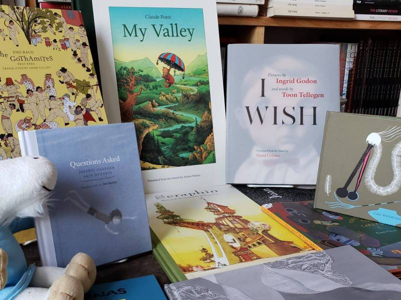 International and translated children's books published by Brooklyn publisher, Elsewhere Editions. Photo: Jill Schoolman.