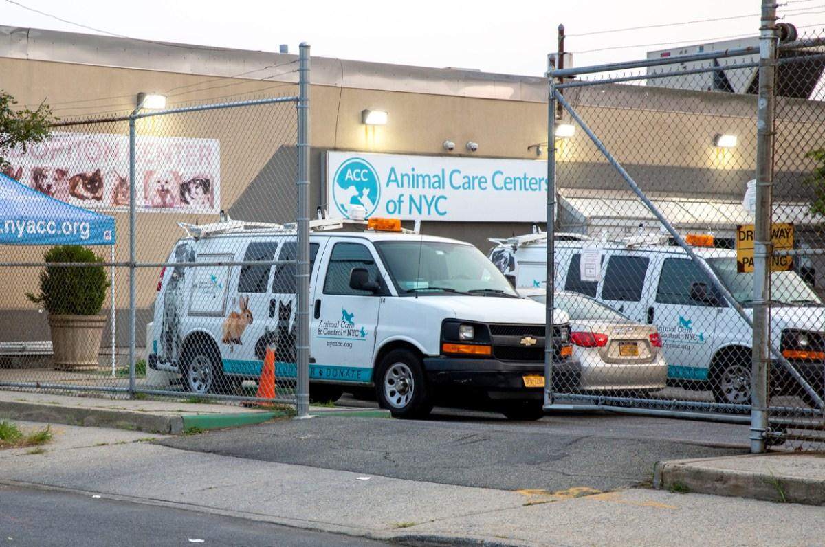 City Council members demand probe into Animal Care Center after Post exposé