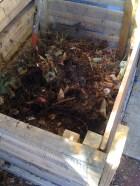 First bins