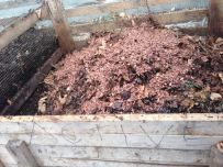 The chocolaty smelling Cacao Husks that was donated from Fine & Raw.