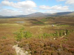 Looking back down the Meall a' Bhauchaille path to Ryvoan and across the Cairngorms.