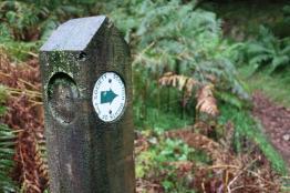 Scottish Rights of Way post marking start of Cam Bhealach path.