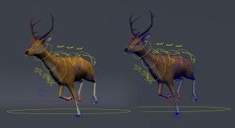 deerShot01