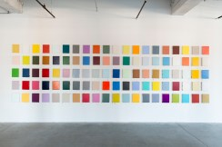 Installation view of 100 Days of Color from Leah Rosenberg: Color and Scale at Black & White Projects (2016)