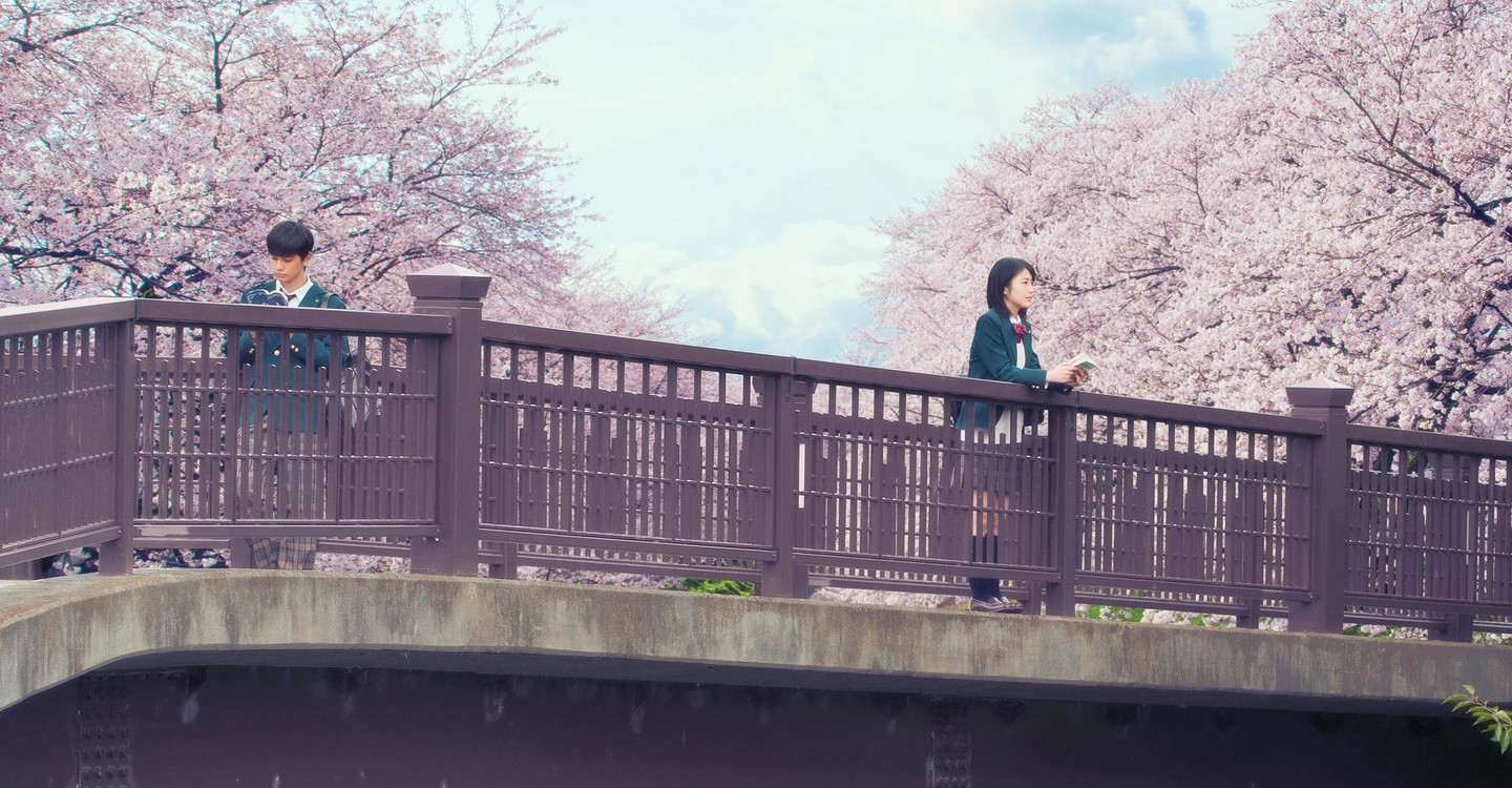 Movie Let Me Eat Your Pancreas Surprisingly Beautiful And