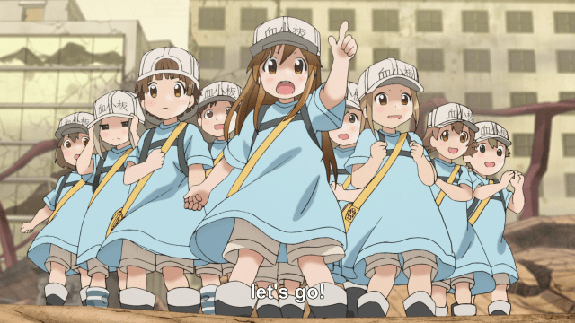 platelets.png