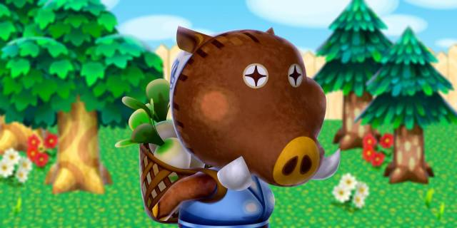 Joan-animal-crossing-new-leaf-40905783-2000-1000.jpg