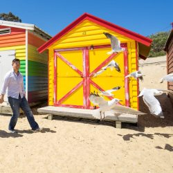 funny moment of couple chasing birds in front of Brighton Beach House captured by wedding photographers Derek Chan